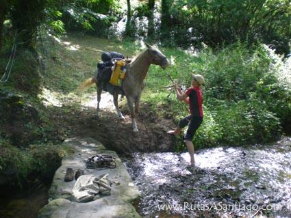 Una amazona y su caballo intentan cruzar un arroyo en el camino a Santiago.