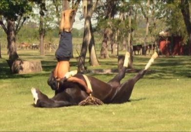 Este indio doma a los caballos con caricias