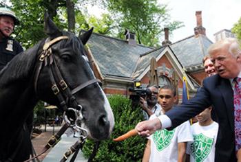Donald Trump ofreciendo una zanahoria a un caballo policía en Central Park, Nueva York, cuando solo era magnate en 2014.