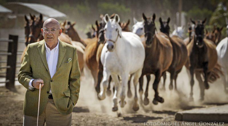 El ganadero y fundador de Mango, Nahman Andic Ernay (Caballo de Oro 2016), hace unos días en La Otomana. (Fotos y video: Miguel Ángel González/Diario de Jerez)