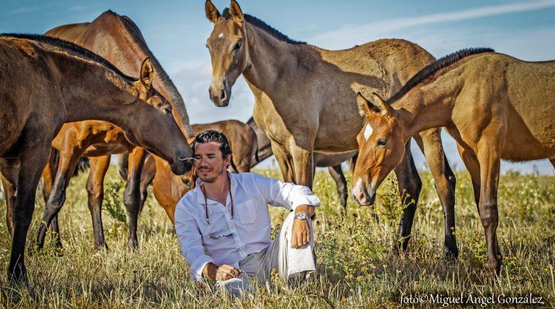 El jerezano Miguel Bohórquez es el heredero de una de las estirpes más populares del caballo español. Los hermanos de estos potros son alabados en todo el continente americano. (Fotos: Miguel Ángel González/Diario de Jerez)