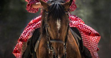 10 refranes sorprendentes sobre caballos y mujeres