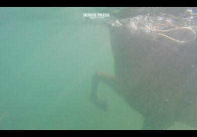 Spirit salvaje en el Atlántico (Vídeo)