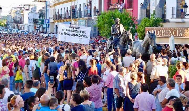 Los almonteños han respaldado esta tarde la manifestación de los ganaderos de la marisma por la suspensión de la Saca de las Yeguas.