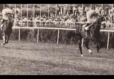 El País, un caballo de leyenda (Vídeo)