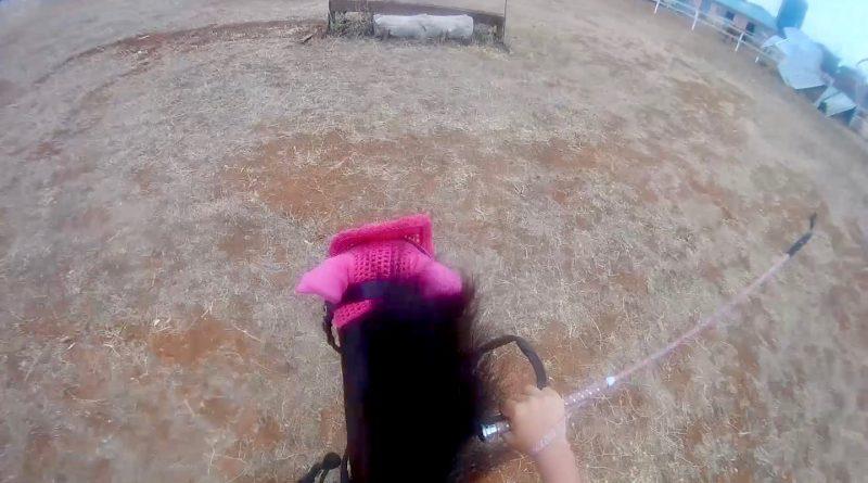 Juguetona, de 105 centímetros de alzada, galopando el miércoles por el campo de cross del centro hípico Bahía Verde (Puerto Real, Cádiz), en una imagen de la grabación que puedes ver en esta entrevista. (Vídeo: Borja Benjumeda para Horse Press).
