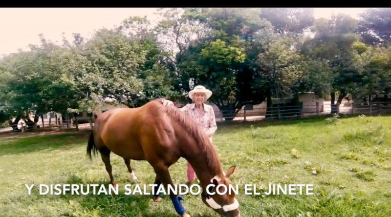 La ganadera británica y la yegua Sea Zipi en una imagen del vídeo, el lunes en Cortijo de Guerra.