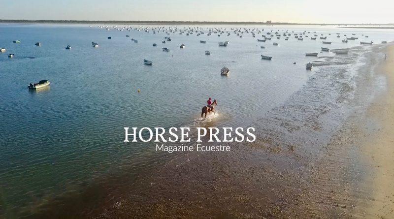El jinete de Sanlúcar montando al corredor irlandés el pasado jueves en la playa de Las Piletas.