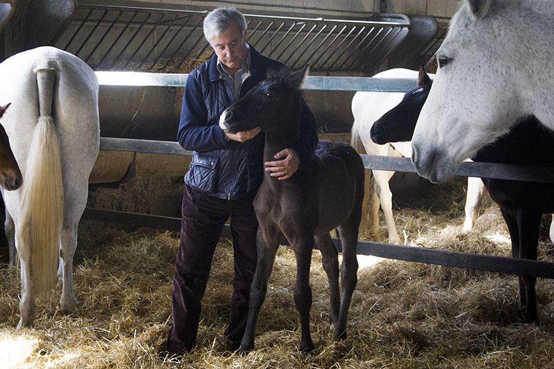El presidente de Expasa, Carlos Escribano, en los establos de la ganadería estatal. Fuente: www.empresasimparables.com