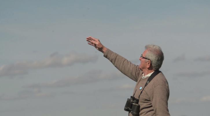 Fotograma del vídeo de Paco Jiménez avistando grullas hace unos días en el cortijo La Haba, junto al humedal de La Janda, en Tahivilla. Vídeo: B. Benjumeda.