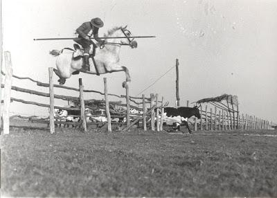 Ángel Peralta saltando una empalizada con el caballo Descuido en su finca sevillana. Fuente: Yeguada Peralta.