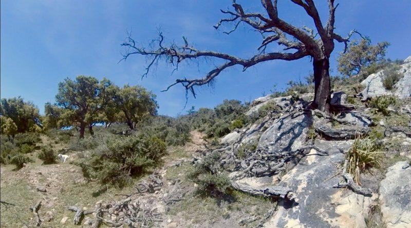 Mirador de las Asomadillas, Jimena de la Frontera, en el parque natural de Los Alcornocales, el pasado domingo.