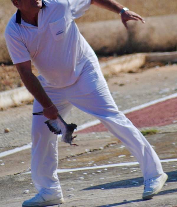 Un hombre lanzando una paloma a brazo en las batidas del campeonato nacional de tiro al vuelo de 2016 en Sevilla. Foto: Ecourbe.org