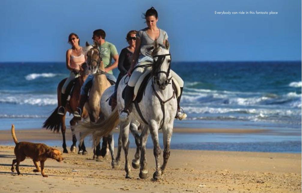 Graciela Domecq es la ganadera local. Sus caballos árabes y cruzados permiten experiencias agradables a todos los niveles desde el centro ecuestre El Jibbah hasta las playas gaditanas de Zahara y Bolonia y la Sierra del Retín, con rutas de varias horas a caballo bajo las noches de luna llena.