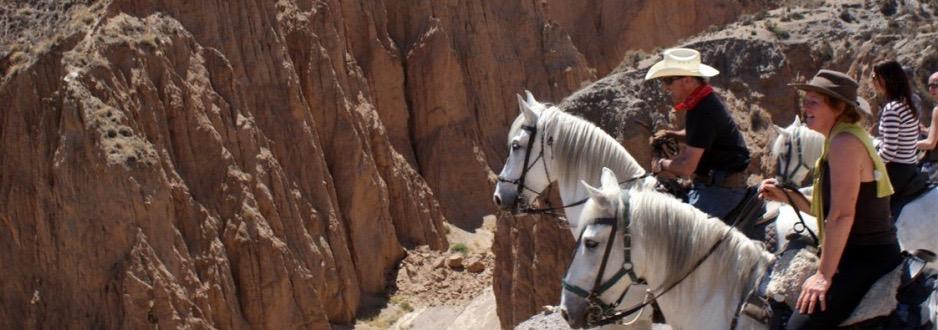 Atravesar puentes que cruzan ríos serranos, bordear barrancos hasta llegar a las cumbres más cercanas al Veleta y el Mulhacén, descabalgar en uno de los pueblos más altos de España, Trevelez, a 1.700 metros. Allí ofrecerán un excelente jamón ibérico. Después de bajar la cara norte de Sierra Nevada llegará el desierto. El de Tabernas, en Almería, donde se recrea el oeste americano. El plan de siete días lo propone la Asociación de Empresarios de Turismo Rural y Ecuestre de Andalucía (Agetrea).