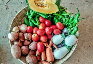 Cesta con alimentos de la huerta. Frutas y hortalizas expuestas en un mercadillo reciente en La Reverde, cooperativa de Jerez dedicada a la producción y el consumo de productos ecológicos.