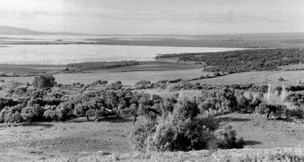 La laguna de La Janda era un mar de agua dulce con islotes de bayuncos y paja castañuela en los momentos de máxima inundación como esta retrospectiva previa a la canalización del suelo.